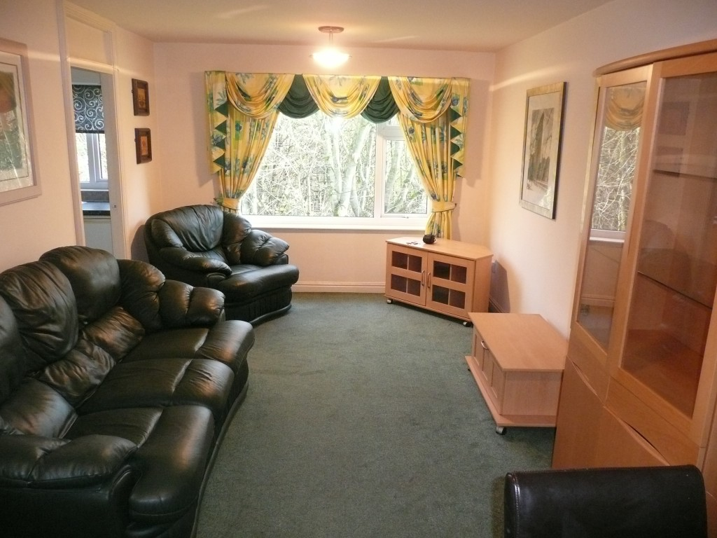 17 camelot way living room